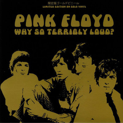 PINK FLOYD - WHY SO TERRIBLY LOUD? -COLOURED VINYL- (Vinyl LP)