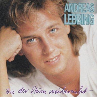 Andreas Lebbing - Bis Der Sturm Voruberzieht + Wenn Du Noch Lebst (Vinylsingle)