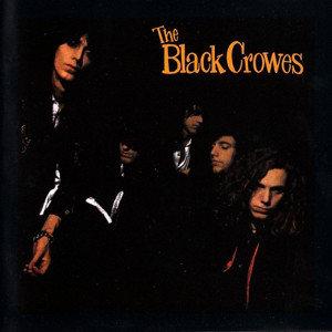 BLACK CROWES - SHAKE YOUR MONEY MAKER (Vinyl LP)