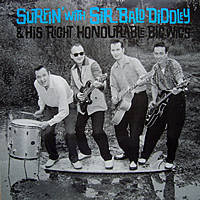 Sir Bald Diddley - Sir Bald Diddley And His Right Honourable Big Wigs  (Vinyl LP)