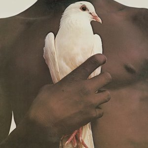 SANTANA - GREATEST HITS (Vinyl LP)